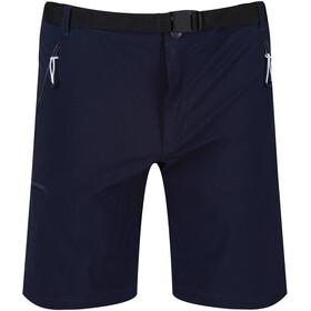 Regatta Xert III Stretch Shorts Herrer, blå